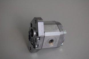 Marzocchi hydraulische Zahnradpumpen BHP280-D-8 für Speed 500-3500 U/min